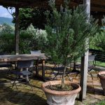 PPO_OLIVETO-06.2011--Eating-terrace-nr-the-Church-_DSC0081